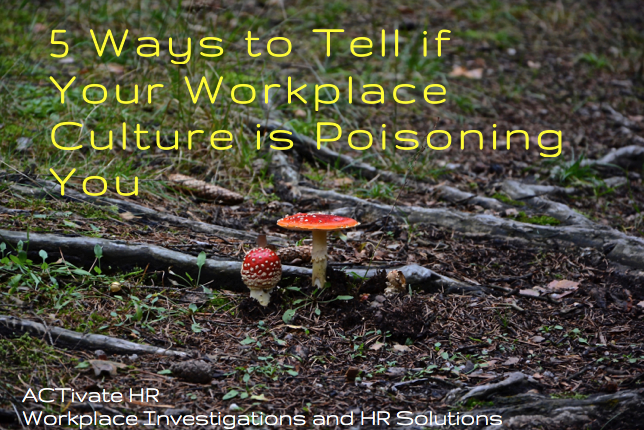 Toxic Workplace Culture: 5 Ways to Tell If It's Poisoning You