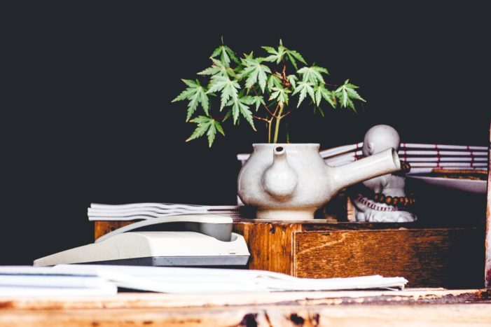 Legal Marijuana? What Does this Mean for Alcohol and Drug Policies?